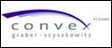 convex ZT GmbH